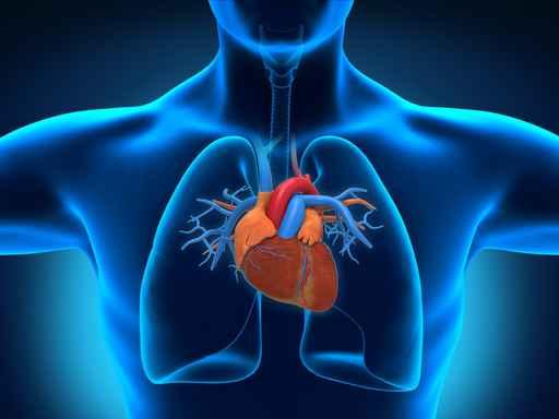 Mityba nėra panacėja nuo širdies ir kraujagyslių ligų