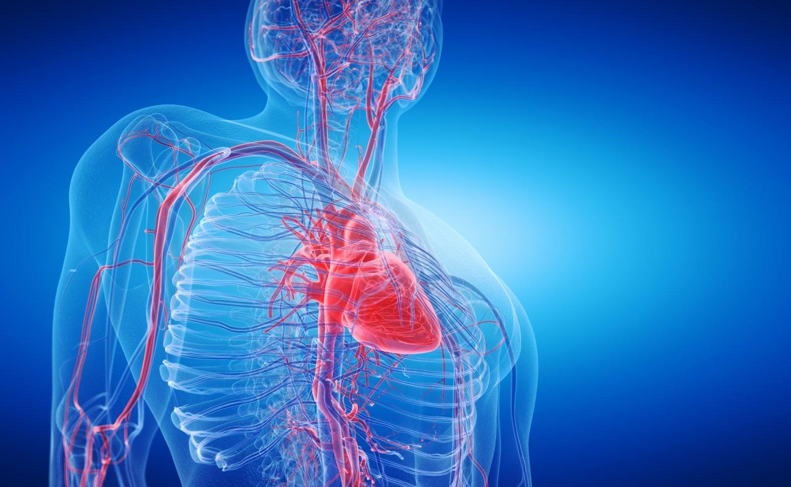Kas sukelia astenovetacinį sindromą: simptomus ir gydymą - Hipertenzija November