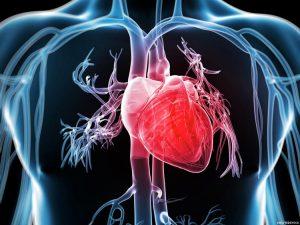 širdies sveikatos naujienų tyrimai