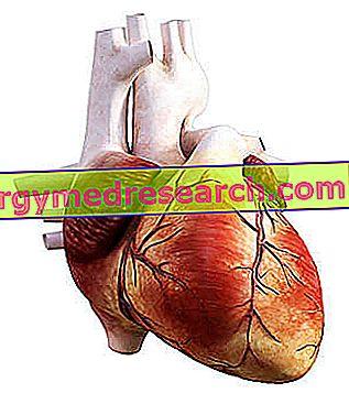 kairiojo prieširdžio hipertenzija kas tai