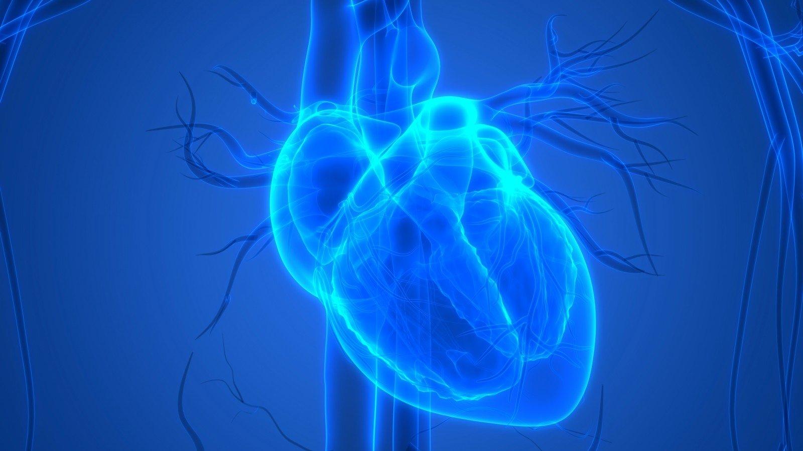 Stop širdies ir kraujagyslių ligoms!
