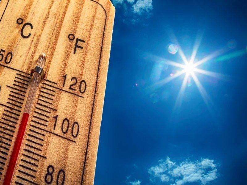 Vilniaus miesto savivaldybė - Kaip elgtis per karščius?
