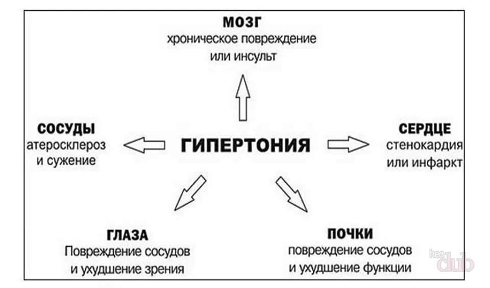 hipertenzijos gydymas liaudies gynimo priemonėmis be vaistų)