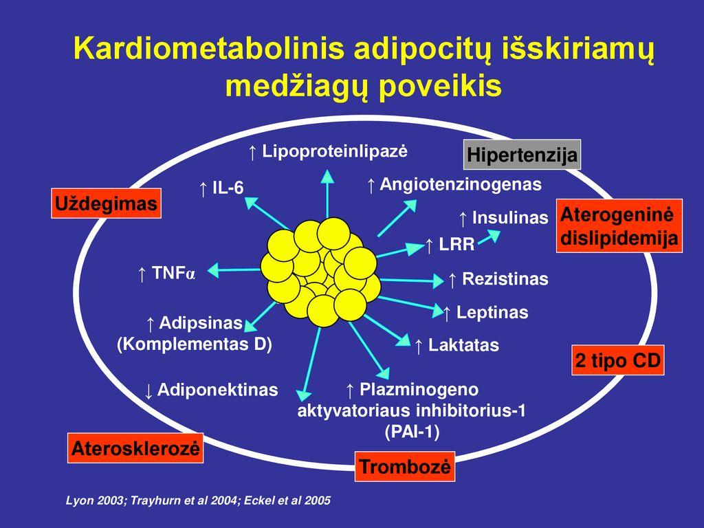 Hipertenzija ir prieširdžių virpėjimas: diagnostika, prevencija ir gydymas