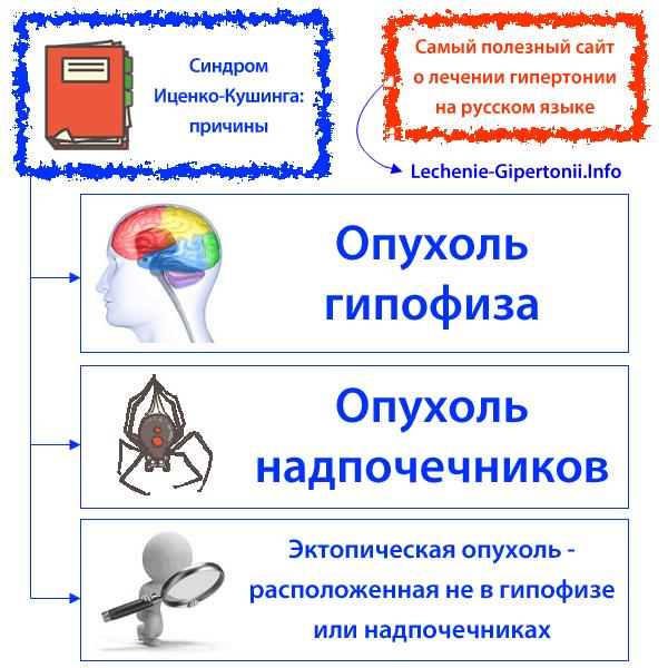 kaip vartoti dibicor nuo hipertenzijos)
