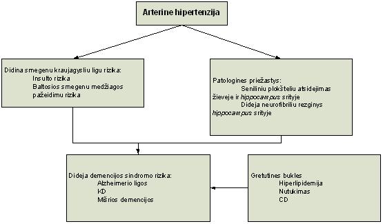 hipertenzija smegenų baltoji medžiaga
