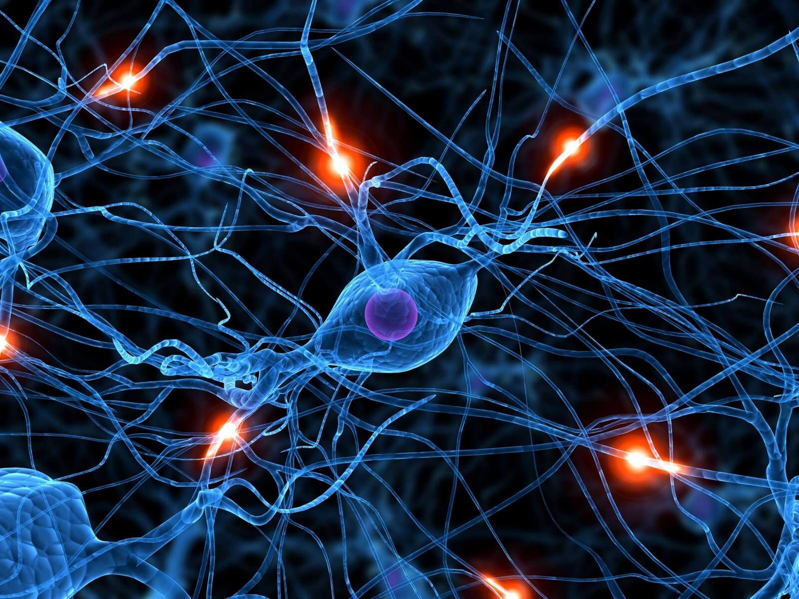 Suaugusiųjų atminties ir smegenų funkcijos gerinimo preparatai - Hipertenzija November