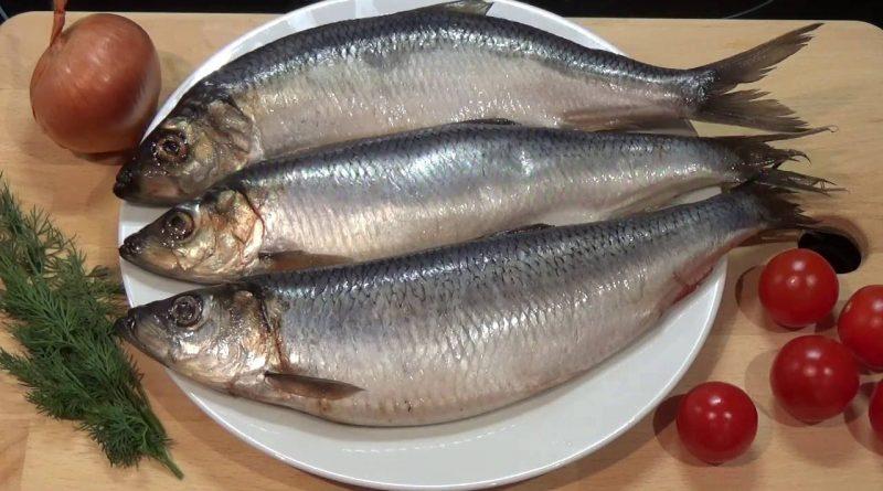 ar galima valgyti sūdytą žuvį su hipertenzija nuotaika nuo hipertenzijos