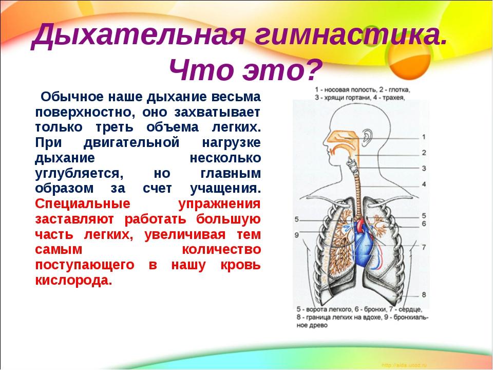 hipertenzijos gimnastika)