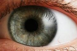 hipertenzija ir akių vyzdžiai vitaminai šunų širdies sveikatai