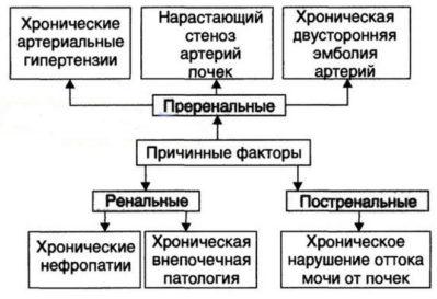 hipertenzija ir sustanonas)