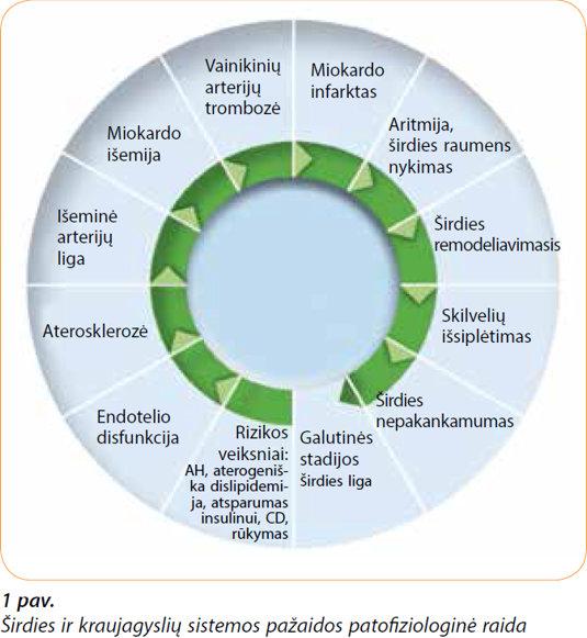 arterijos hipertenzijos kodas mikrobiologijai 10