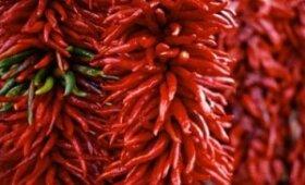 Cayenne pipirai ir čili - kas yra skirtumas, nauda ir žala - Daržovės