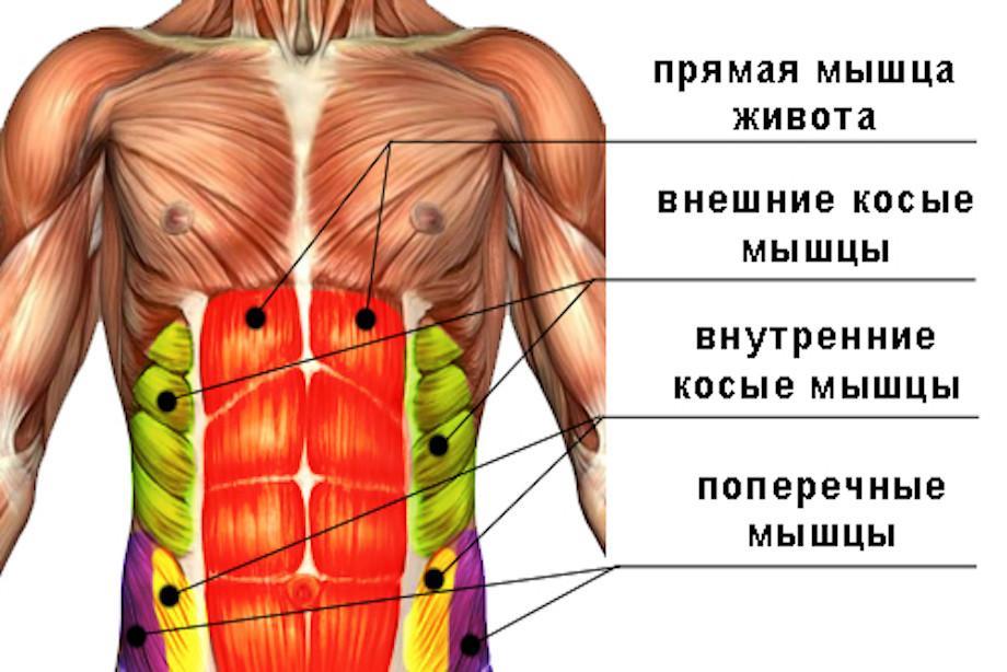 ar galima pumpuoti raumenis su hipertenzija)