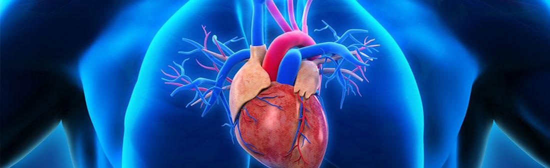 Nutarėte sportuoti? Pasidalinkite planais su kardiologu   vanagaite.lt