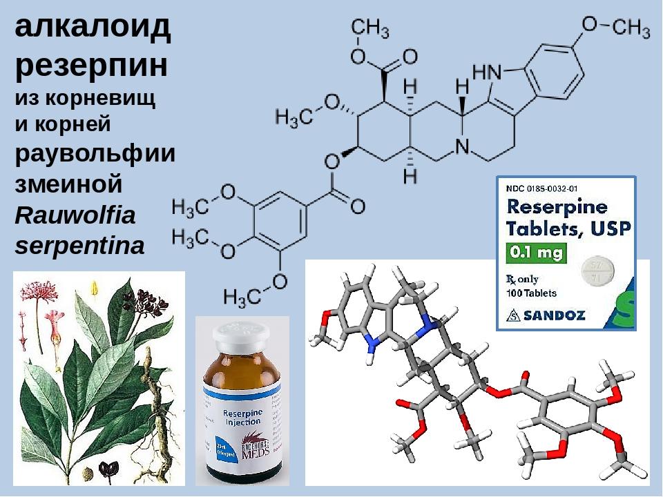 alkaloidai nuo hipertenzijos)