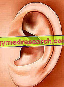 ausies masažas ir hipertenzija)