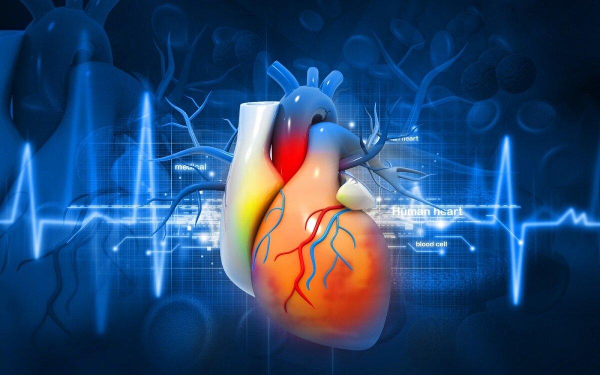 Vasara – pavojingas metas širdžiai: 10 patarimų ligoms išvengti