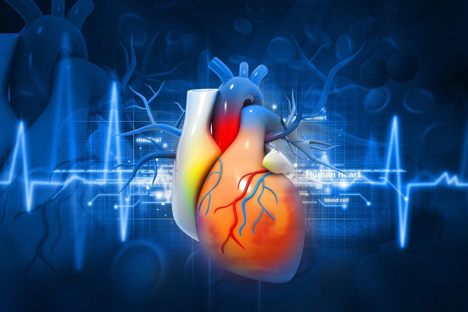 širdies ir širdies sveikata