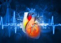 Elektrolitai, gyvybiškai svarbios medžiagos! | Natura Medica