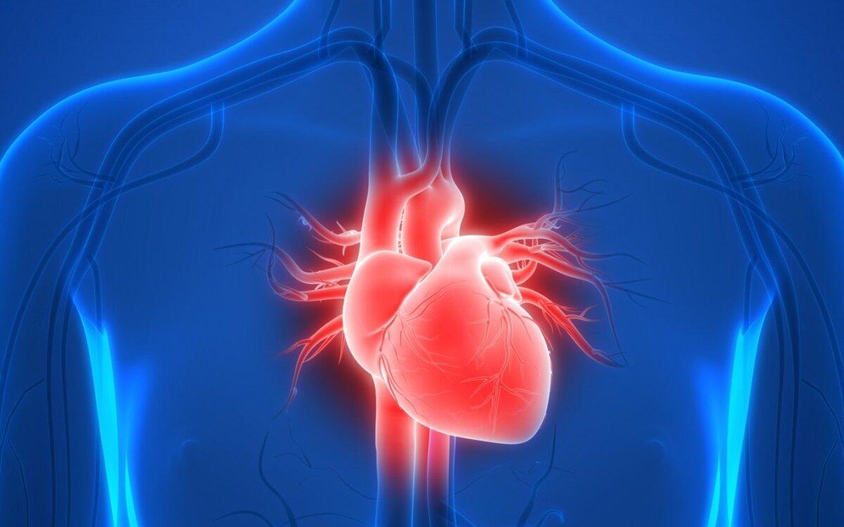 Kaip pagerinti kasdienę širdies funkciją | vanagaite.lt