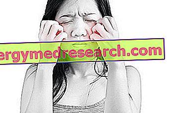 Kas yra veido paraudimas, ar tai pavojinga, kaip gydyti ligą - Anatomija November