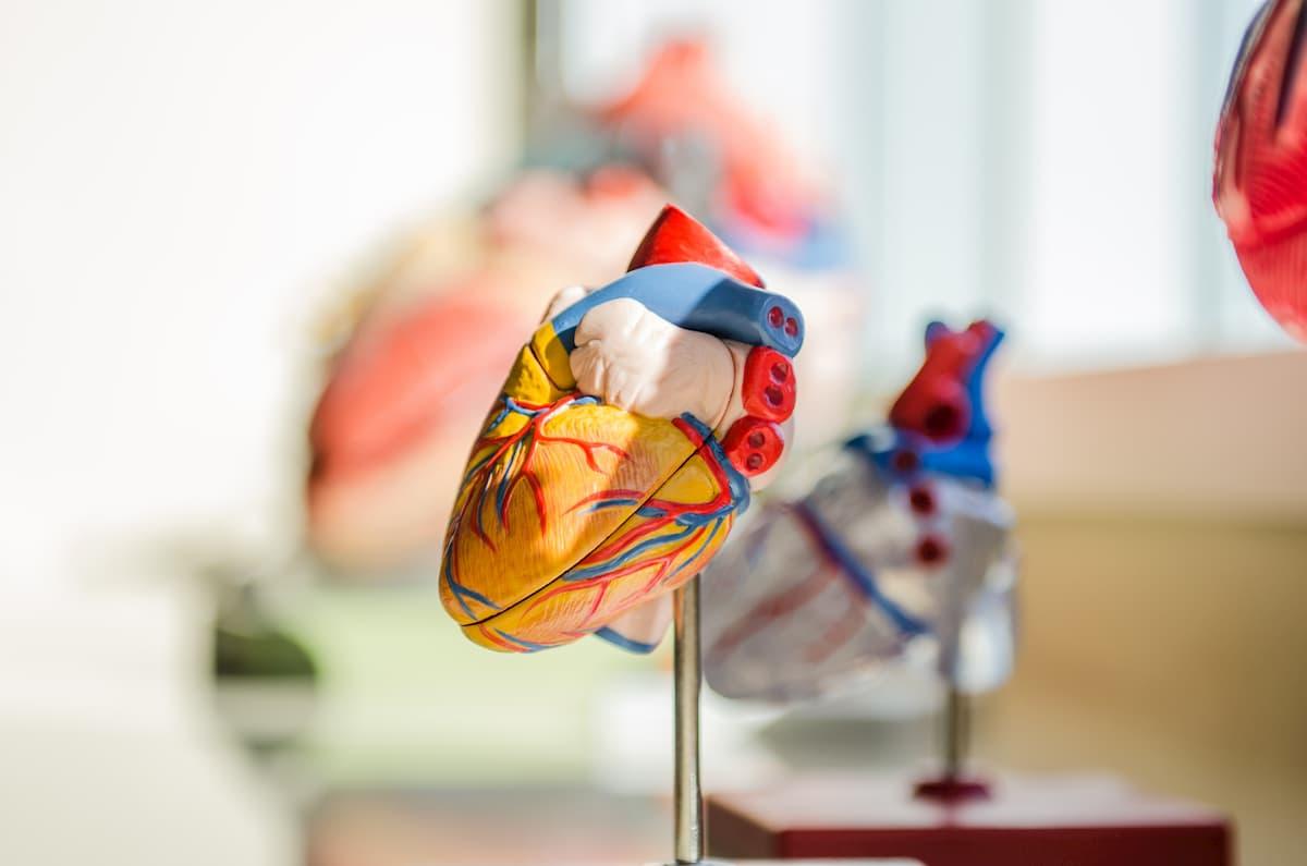 pirmos stadijos hipertenzija ir kraujospūdis