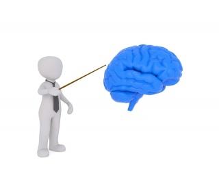 Arterinė hipertenzija blogina smegenų veiklą. Ką daryti? - vanagaite.lt