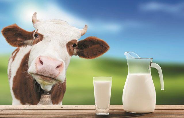 pieno vartojimas sergant hipertenzija