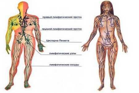 enterosgelis ir hipertenzija)