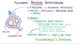 hipertenzija 33 m
