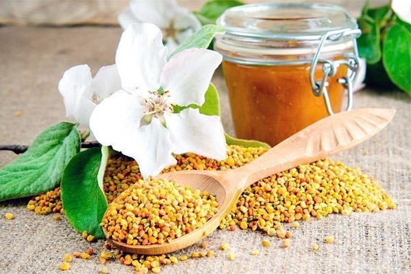 bičių duonos ir žiedadulkių nuo hipertenzijos
