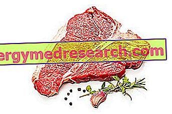arklio mėsa su hipertenzija vaistai nuo sunkios hipertenzijos