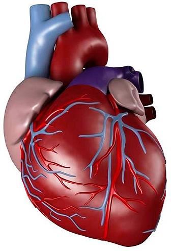 ascardas dėl hipertenzijos