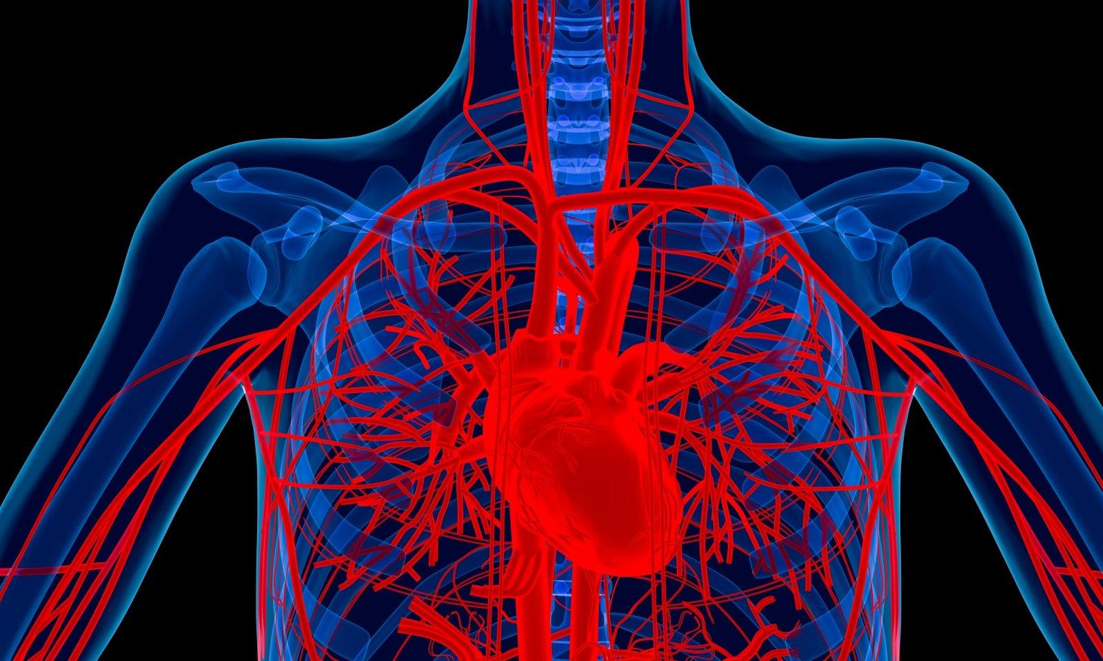 Efektyvus hipertenzijos gydymas be narkotikų 3 savaites