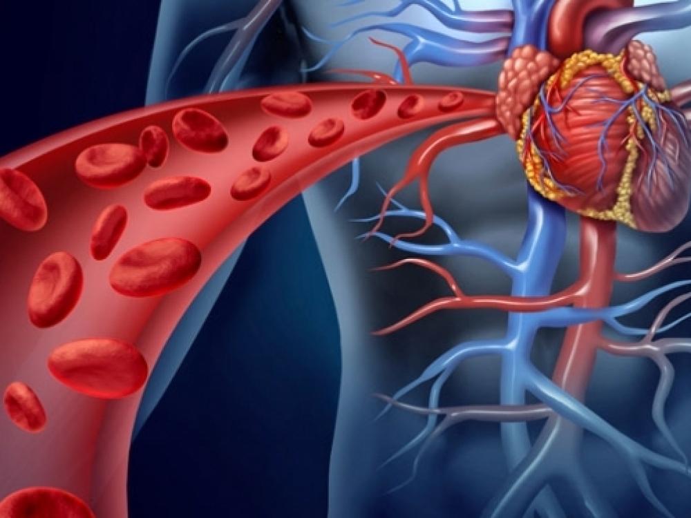 mityba sergant hipertenzija ir širdies ligomis)