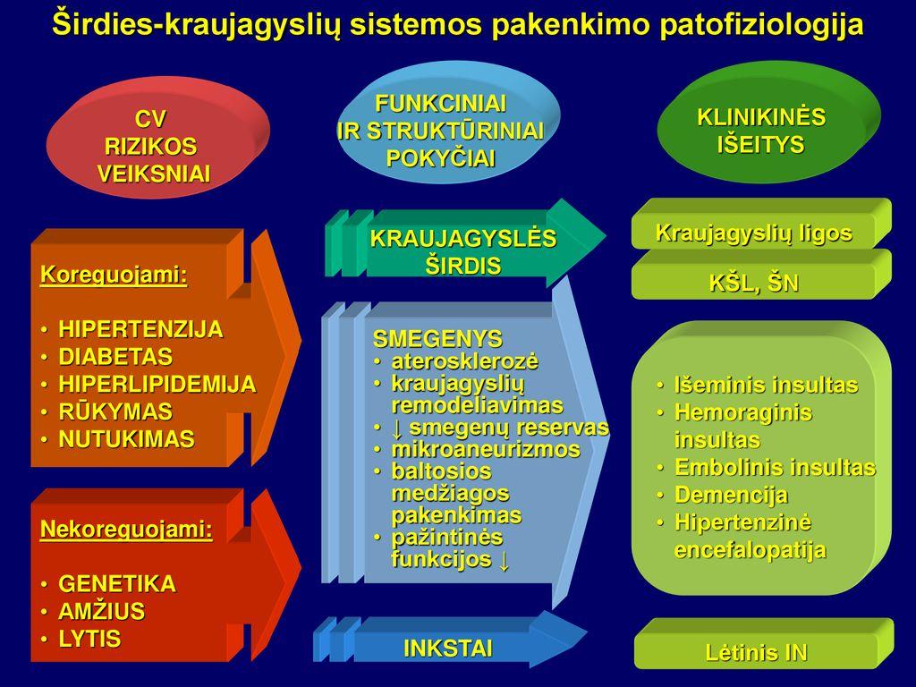 2 laipsnio hipertenzija 1–2 rizikos laipsnis)
