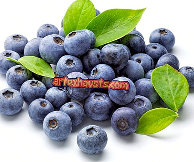 mėlynių nauda sveikatai)