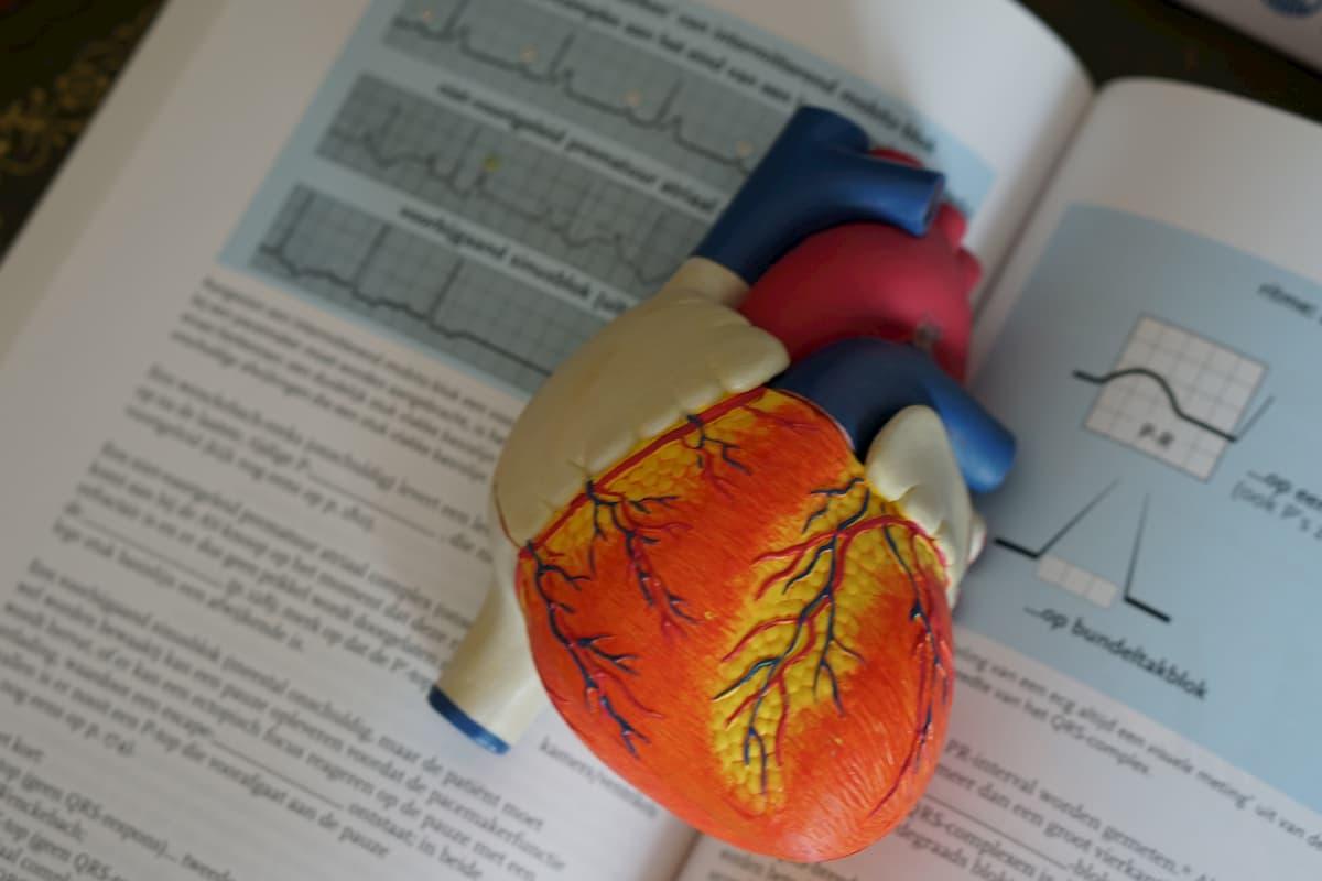 hipertenzija kokie tyrimai