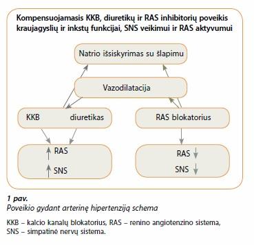 hipertenzijos gydymo veiksmingumo kontrolė)