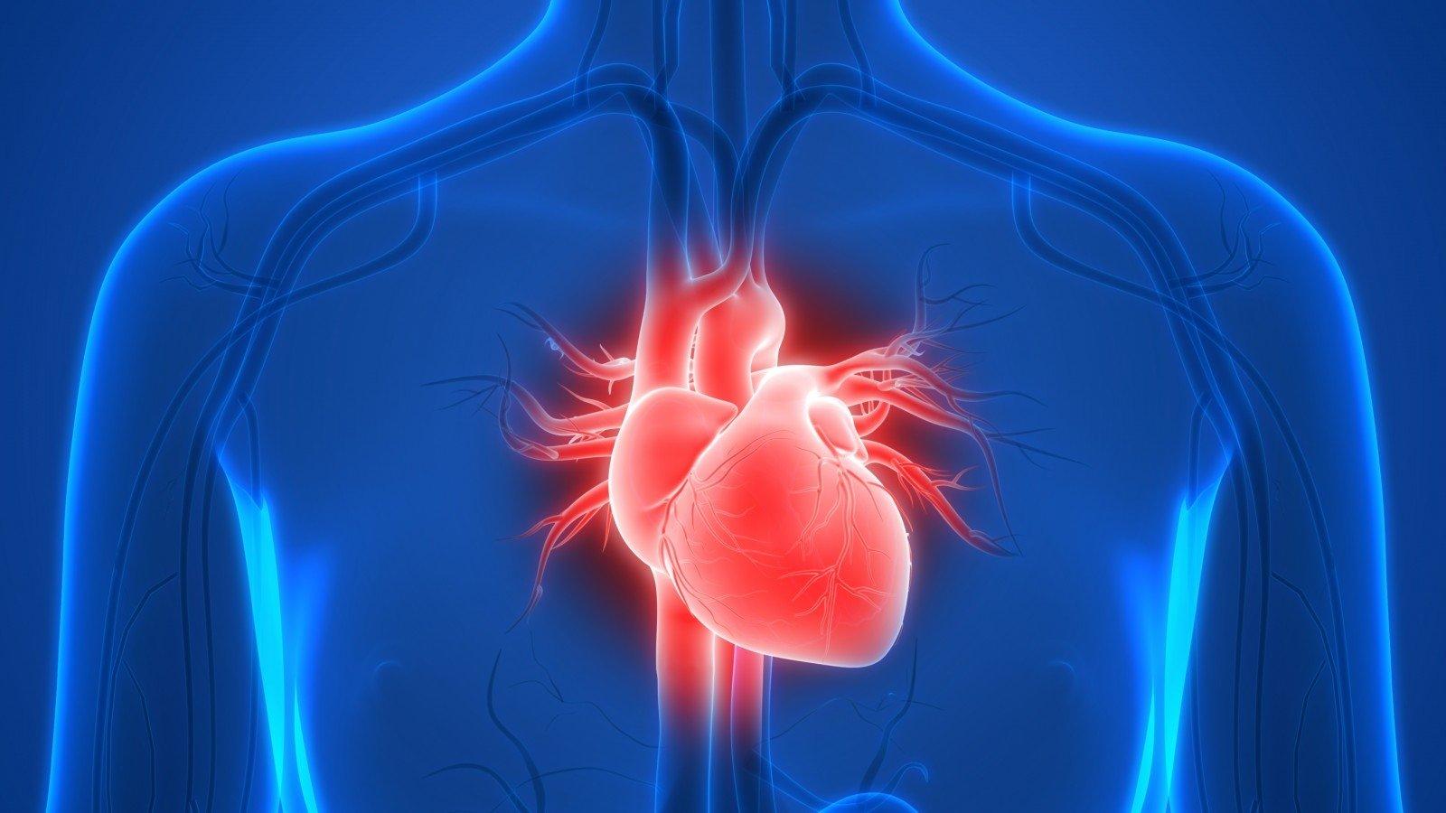 hipertenzija, o tada hipotenzija, kas tai yra knyga atsikratyti hipertenzijos