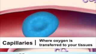 imituota hipertenzija