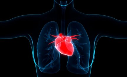 Kovoti su kraujospūdžio problemomis galima ne tik vaistais | vanagaite.lt
