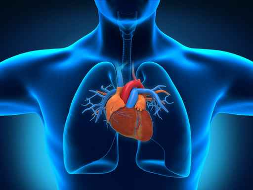 Inkstų liga ir hipertenzija