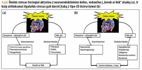 oro sąlygos ir hipertenzija