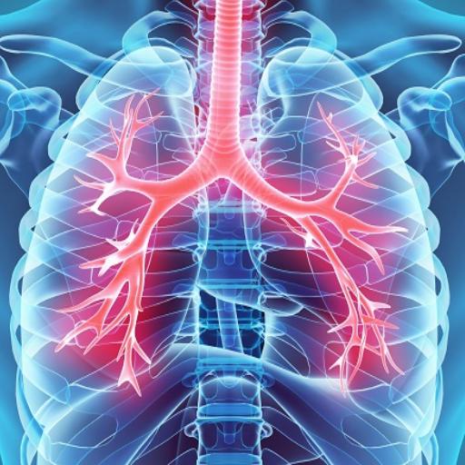 Hipertenzija - LRT